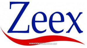Assistênica Técnica Zeex