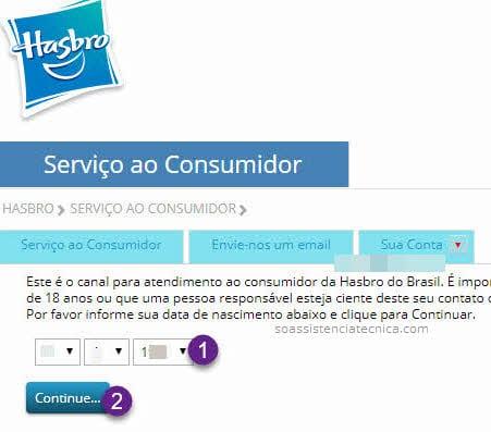 Formulário Assistência Técnica Hasbro